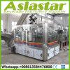 Automatic Glass Bottled Beer Rinser Filler Capper Making Processing Plant