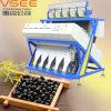 CCD Color Sorter Machine for Black Beans
