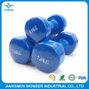 Blue Powder Coating with High Hardness for Fitness