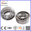 Single Row Radial Cylindrical Roller Bearing SL183005