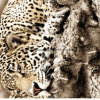 100%Polyester Leopard Totem Pigment&Disperse Printed Fabric for Bedding Set