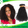 Unprocessed Top Quality Kinky Curly Hair Weave Human Hair Extension