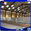 Assembling Easy Installation Steel Construction Materials for Cattle Farm House