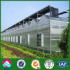 China Supplier Multi-Span Glass Greenhouse