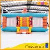 Inflatable Rock Climbing Tower Inflatable Climb Sport (AQ1909)