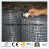 1/2 Inch Electro Galvanized/Hot Dipped Galvanized Welded Wire Mesh
