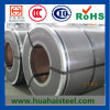 Galvanized Steel Coil SGCC/Sgch