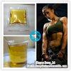 200mg/Ml Boldenon Cypionate Steroids Boldenon 200 for Bodybuilding