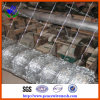 Professional Manufacture High Quality Cattle Fence (CLF08)