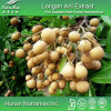 100% Natural Longan Aril Extract (4: 1)