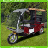 High Speed and Saving Engergy Electric Motorized Bicycle for Passenger (brushless DC motor)