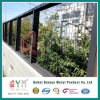 PVC Coated Welded Wire Mesh Fence for Garden Fence