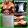 Assay 99.9% 17alpha-Methyl Testosterone 65-4-3 Direct Selling Raw Powder
