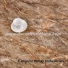 Vinyl Click Floor Luxury Vinyl Floor Laminate Wood Floor Plastic Floor Vinyl Floor