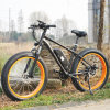 26 Inch 48V 500W Fat Mountain E Bike
