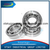 Deep Grove Ball Bearing (6202ZZ) with Brand SKF Koyo NSK or Other
