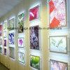 The New Trade Show Thin Acrylic LED Light Box A3