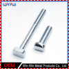 Customized Fasteners Stainless Steel Special Full Thread T Bolt