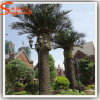 Garden Decoration Fiberglass Artificial Date Palm Tree