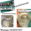 Bodybuilding Steroid Powder Testosterone Acetate Growth Hormone Powder