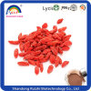 Raw Organic Goji Berries Extract