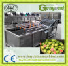 Bubble Cleaning Type Guava Washing Machines