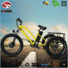 Fat Tire 500W Motor 3 Wheel Electric Tricycle Kit