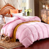 High quality Warm Goose Down Quilt