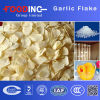 High Quality Dehydrated Garlic Flakes Manufacturer