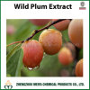 Factory Supply Wild Plum Powder Extract for Food & Beverage