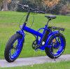 48V/36V E Bike Folding E Bike Fat Tire Electric Bike