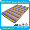 Soft Foam Mattress, Replex Foam Mattress, Roll Mattress