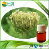 Food Additive, Flavor Enhancer, Spice Carrot Seed Oil