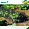 Onlylife Garden Net Grow Tunnel for Plants
