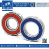 6007 High Temeprature Electric Motor Parts Deep Groove Ball Bearing