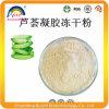 Aloe Vera Spray Dried Powder 200X