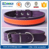 Padded Leather Dog Collar Buckle Pet Leash