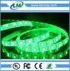 Interior Single color SMD 5050 60LEDs/m Green / Red / Blue LED flexible strip