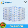 Energy Saving Silent Type Cold Room