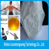 CAS 57-85-2 Androgenic Anabolic Steroids Testosterone Propionate Injection / Oral