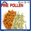 Hot Selling Powder Cell Wall Broken Pine Pollen Powder Bulk Pine Pollen Powder Pine Pollen Capsule