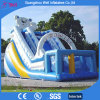 Popular White Bear Inflatable Slide Games for Kids