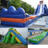 Inflatable Big Water Slide for Outdoor