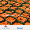 Grass Seed Mats 50mm--200mm Cell Depth HDPE Smooth Plastic Geocell
