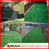 2 Star Soccer Grass Artificial Grass Synthetic Turf
