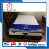 Cheap Compress Spring Mattress Wholesale