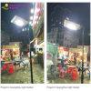Solar Path Lamp/Solar Sensor Light/LED Outdoor Lighting (SRS-S6)
