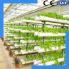 Convenient and Durable Hydroponic System