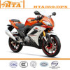 250cc Motorcycle (HTA250-DPX)