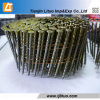 Diamond Point Smooth Collated Coil Nails Manufacturer and Exporter